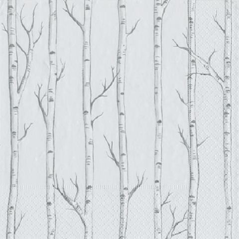products birch trees cocktail napkins 150×150
