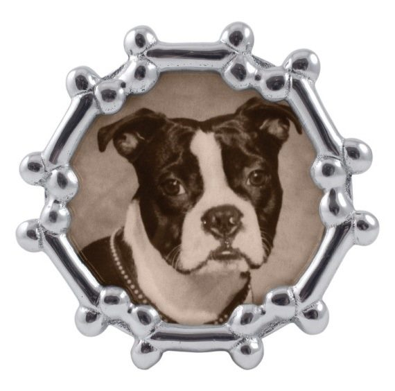 products small dog bone frame 150×150