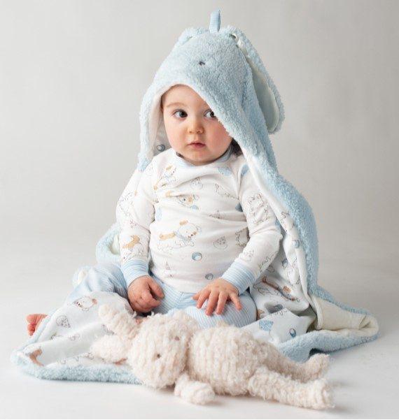 Blue Hooded Blanket