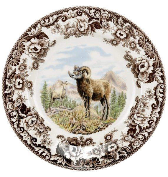 Bighorn Sheep Dinner
